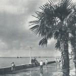 Набережная 1960 г.