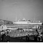 Зяблик в порту